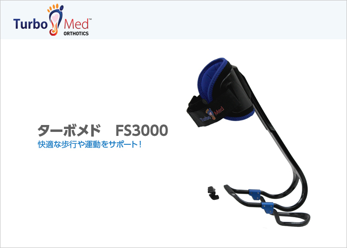 FS3000